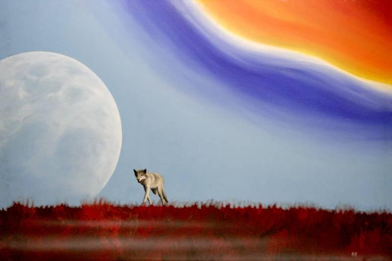 Der Wolf und der Regenbogen