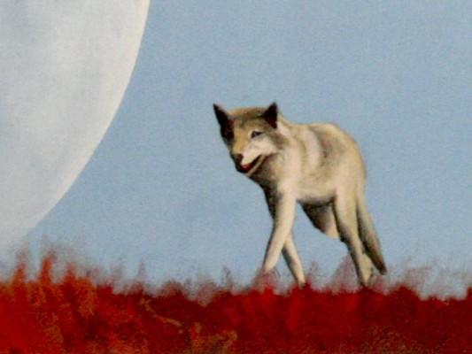 Der Wolf und der Regenbogen, Ausschnitt