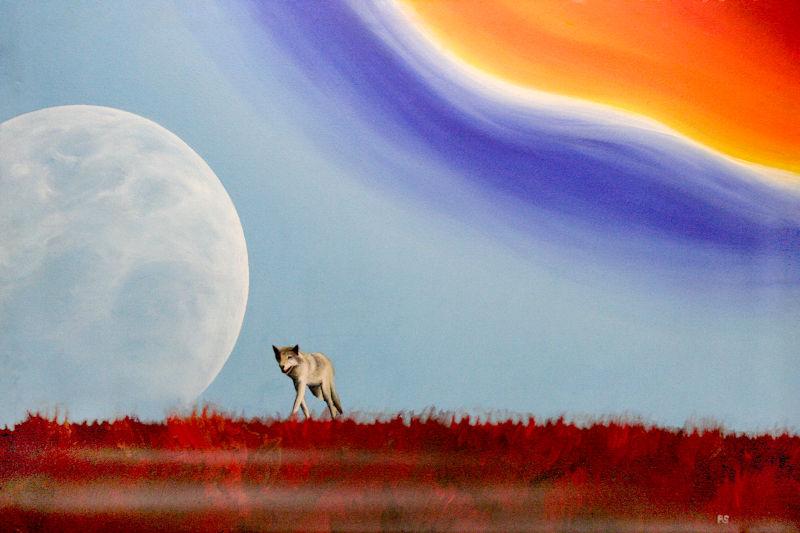 l Wolf und Regenbogen